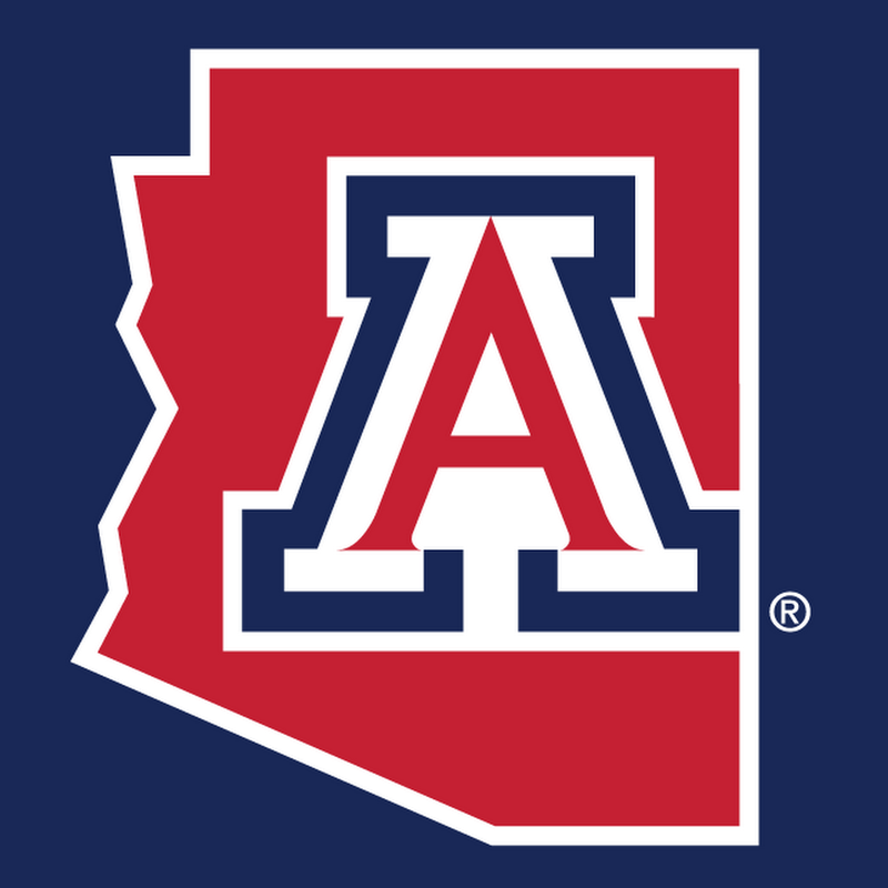 Arizona Wildcats 4